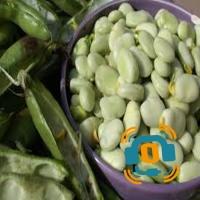 Les fèves